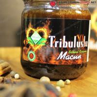 Tribuluslu Macun - трибулусная паста от фирмы Themra