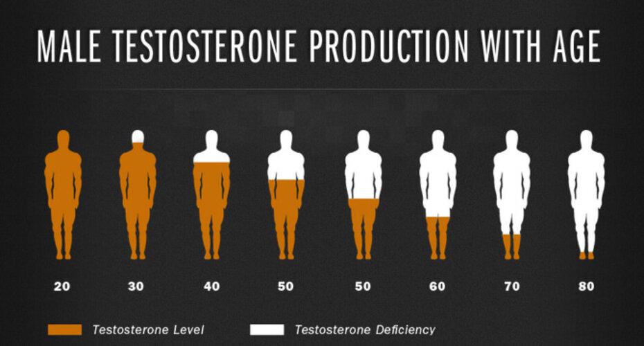 График уровня тестостерона в разных возрастных периодах