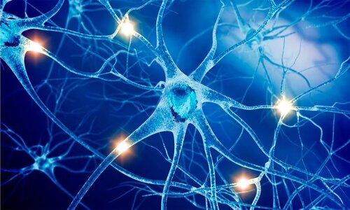 еротонин для нервной системы